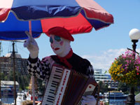 Busker working the Inner Harbour